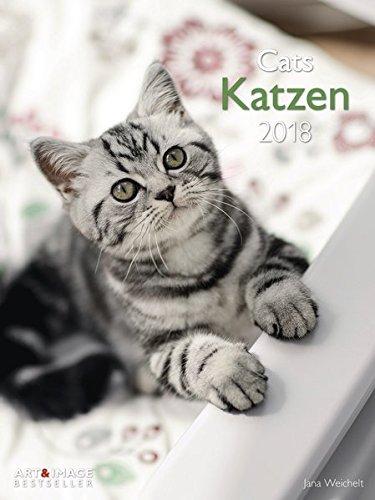 Katzen 2018 - Wandkalender, Posterkalender, Fotokalender, Katzenkalender  -  48 x 64 cm