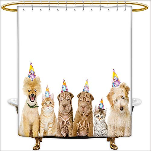 urtain Spa Shelter Dogs Terrier Cats with Cone Hats Party Theme Image for Multicolor. Waterproof and Anti-Mold Polyester Bathtub with 12 Hooks.W48 x H72 Inch ()