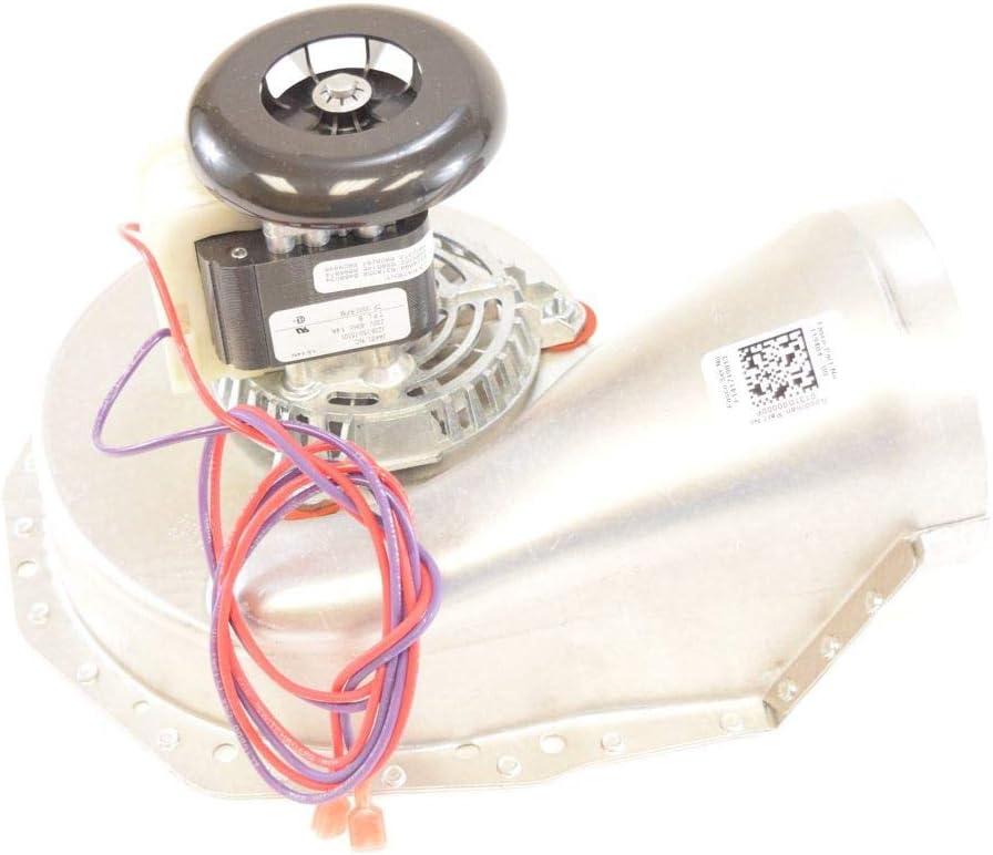 D/&D PowerDrive BT41 Campbell-Hausfeld Replacement Belt