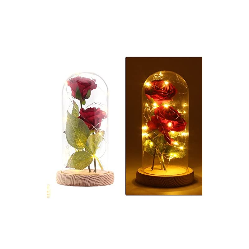 silk flower arrangements ddsky beauty and the beast silk rose and led light with fallen petals in a glass dome on a wooden base artificial flowers full kit creative diy gift for christmas valentine's day (red)
