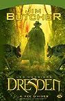 Les Dossiers Dresden, tome 4 : Fée d'hiver par Butcher