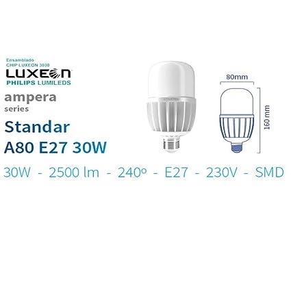 Bombilla LED E-27 30w 5000K Ip40 2500lm farolas