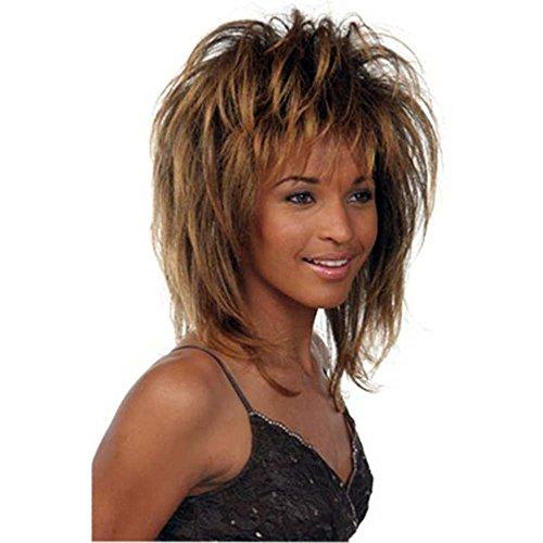 [Tina Turner Costume Wig] (Tina Turner Wig)