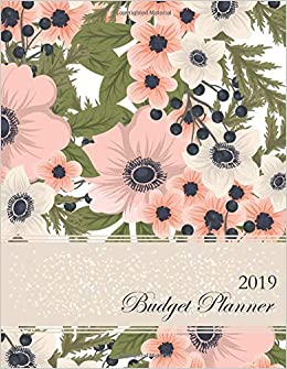 amazon com 2019 budget planner monthly budgeting personal finance