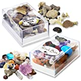 Fossil and Rock Box Set. Pack of 2 Boxes
