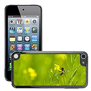 GoGoMobile Slim Protector Hard Shell Cover Case // M00117654 Grass Bee Nature Insect Summer // Apple ipod Touch 5 5G 5th