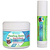 Dog Healing Balm for Paws and Snout - 2 oz Jar + .5 oz Stick - All Natural - Aloe Vera, Tea Tree Oil, Cocoa Butter and Coconut Oil
