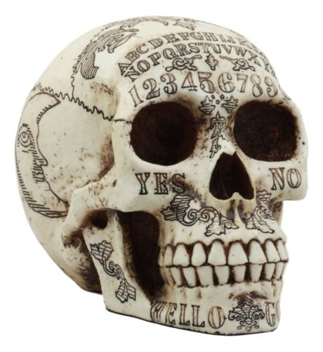 Paranormal Ouija Spirit Medium Skull Figurine Supernatural Occultist Witchcraft premium decor collectible figurine by Moon
