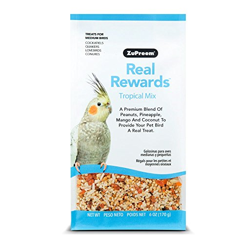 Real Rewards Tropical Mix Medium Bird Treats by ZuPreem