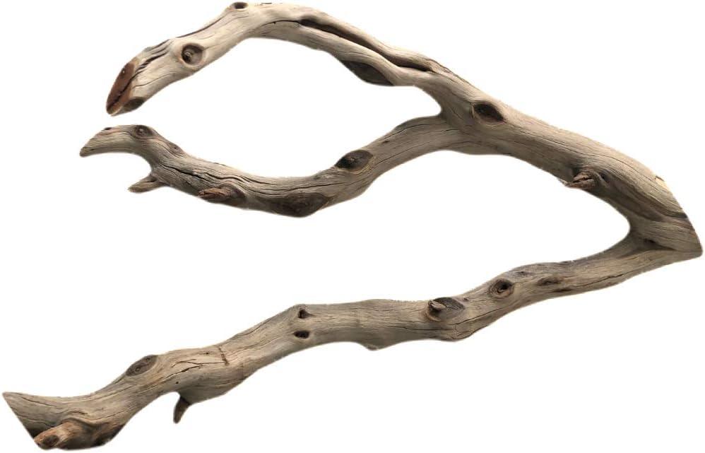 Finn's Forest Manzanita Driftwood