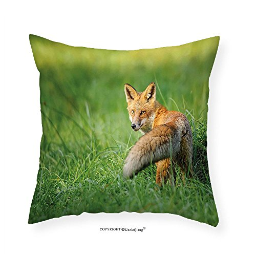 VROSELV Custom Cotton Linen Pillowcase Fox Decor The Red Fox with Fluffy Tail Looking behind in Grass Digital Image for Bedroom Living Room Dorm Fern Green and Ginger 28