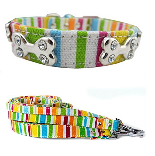 Stripey Dog Collar and Lead Set for Small, Medium And Large Dogs (Xsmall/Small Length) -