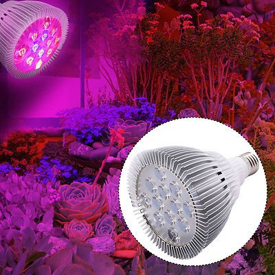24W E27 12 LED Grow Light Lamp Bulb Flower Hydroponic Plant Garden Red Blue by Unbranded