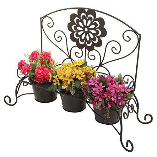 Decorative Black Succulent Cactus Planter
