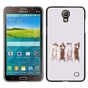 Dragon Case - FOR Samsung Galaxy Mega 2 - Don??t cry - Caja protectora de pl??stico duro de la cubierta Dise?¡Ào Slim Fit