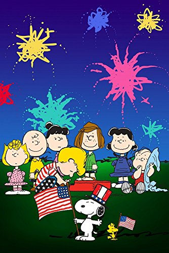 Peanuts MH-PEW-09-C-24 Fourth of July' Canvas Wall Art, 16