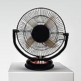 VARSHINE Metal 3 in1 Cabin Fan (Black, 12-inch)