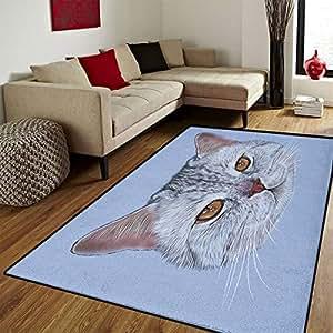Amazon Com Cat Door Mats For Home Scottish Straight Kitty