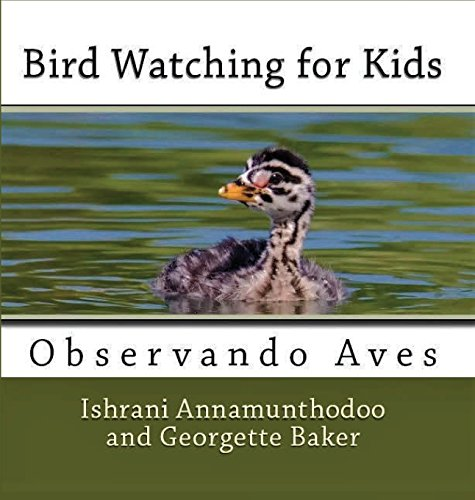 Bird Watching for Kids: Observando Aves by Cantemos