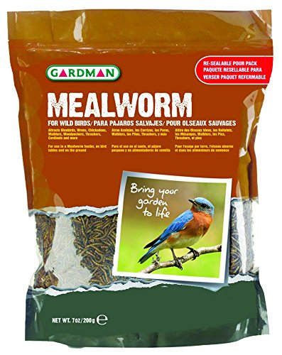 Tub Feeder Round (Gardman BA04513 Mealworm Tub Medium, 7 oz. (200 gram))
