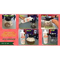 Eco Orange 32-Ounce Concentrate - before and after
