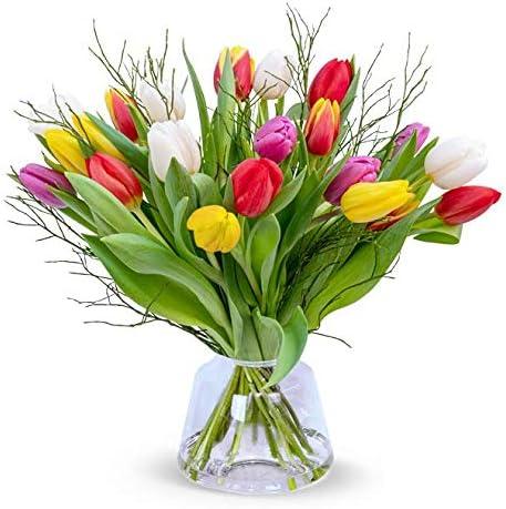 Tulpenstrauß Modern Love, Bunter Tulpenstrauß, 7-Tage-Frischegarantie, Qualität vom Floristen, bunte Tulpen, Heidelbeere, GRATIS-Vase, perfekte Geschenkidee, versandkostenfrei bestellen
