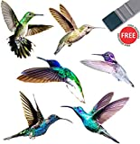 Hummingbird Window Clings - 6 x Anti Collision Decals to Prevent Bird Strikes on Doors & Windows - Static, UV Resistant & Non Adhesive Vinyl Cling - Deterrent Decal & Glass Decor to Alert Birds