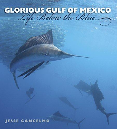 Glorious Gulf of Mexico: Life Below the Blue (Gulf Coast Books, sponsored by Texas A&M University-Corpus Christi)