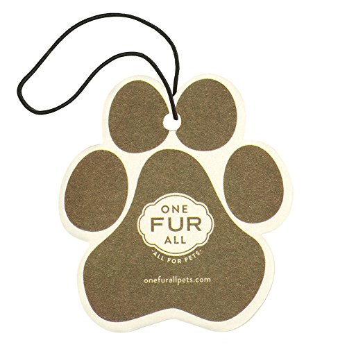 Pet House Car Air Freshener by One Fur All, Pack of 4 - Pumpkin Spice - Non-Toxic Auto Air Freshener, Pet Odor Eliminating Air Freshener for Car, Ideal for Small Spaces, Dye Free Dog Car Air Freshener ()