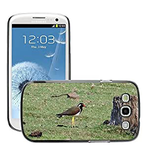 Just Phone Cover Etui Housse Coque de Protection Cover Rigide pour // M00139555 Red-Wattled Lapwing Vanellus indicus // Samsung Galaxy S3 S III SIII i9300