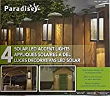 4 Pack Paradise Solar LED Accent/Security Lights, Deck Dock Garden Path Post Light