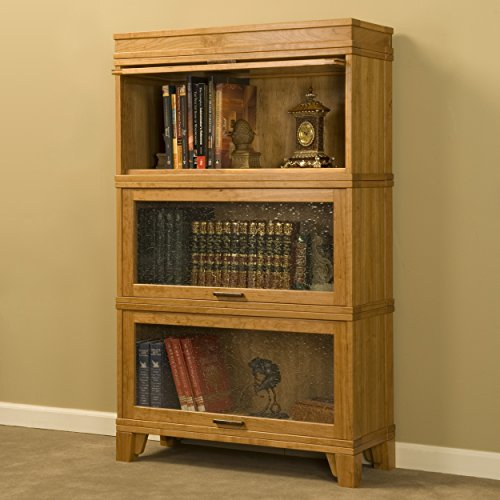 (Woodworking Project Paper Plan to Build Barrister Bookcase)