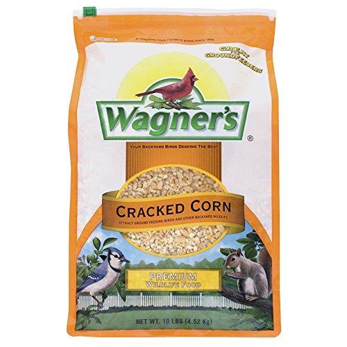 corn 10 can - 6