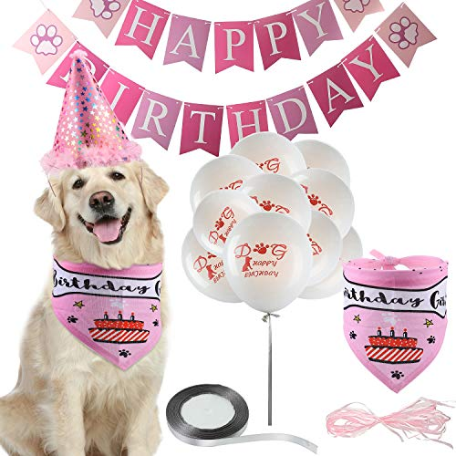 Gejoy Dog Birthday Girl Bandana with Stars Print Party Cone Hat,Happy Birthday Paw Print Banner and 10 Pieces Dog Claw Print Balloons with 850 Inch Sliver Ribbon Roll, Dog Birthday Decoration Set (Happy Birthday Cone Hat)