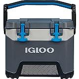 #9: Igloo BMX 25 Cooler
