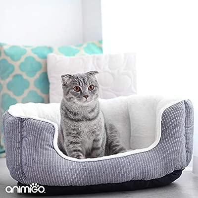 Animigo Soothex para Gatos | Suplementos Naturales con Aminoacidos Esenciales | Relajante sin Efecto Somnífero | para Gatos con Ansiedad y Estres por ...