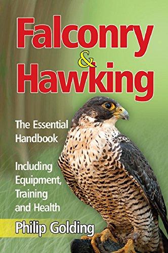 Amazon Falconry Hawking The Essential Handbook Including