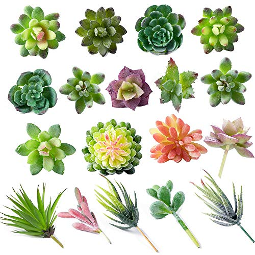 Amadj18 Pack Artificial Succulent Flocking Plants Unpotted Mini Fake Different Type Different Size Succulents Plant for…