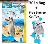 Purina Friskies Seafood Sensations Dry Cat Food, 30 lb (2 Bags + Freebie)