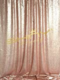 ShinyBeauty Sequin Backdrop-Blush-6FTx6FT Sequin Photo Backdrop,Prom Phtography Background,Curtain Fabric For Wedding