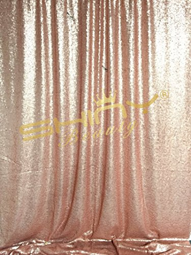 - Sequin Backdrop-Blush 3FTx5FT Shimmer Holiday Fabric Backdrops, Sequin Curtains, Drape, Sequin Panels, Gold Home Decor (Blush)