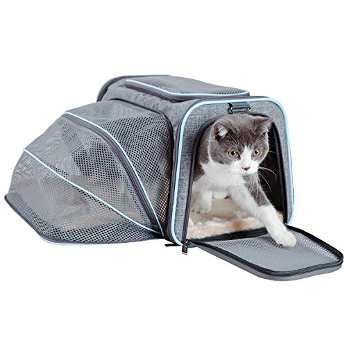 "(Petsfit Cat Carrier Expandable Dog Car Carrier for Medium Dogs, Expandable Pet Carrier Airline Approved Soft-Sided(Grey and Blue Trim) 18""x11""x11"")"