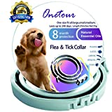 Best Flea Collar For Dogs - Flea and Tick Collar for Dogs - Enhanced Review