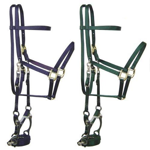 Derby Originals Nylon Halter Bridle Combo with Reins for Full Horse ()