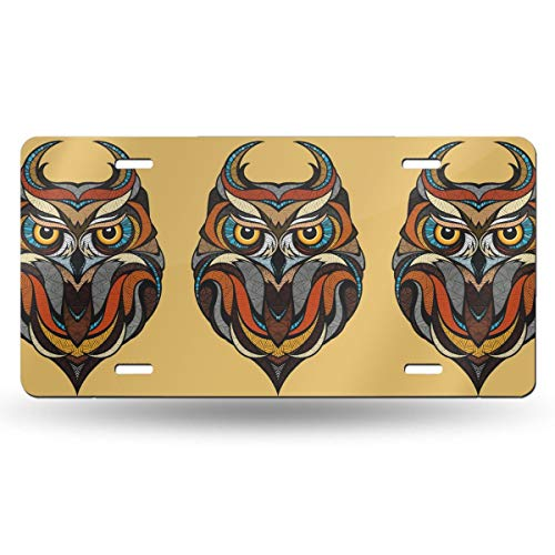 NLXZD Stained Glass Style Owl Novelty License Plate American Vehicle License Plate