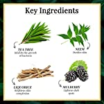 Good Vibes Aloe Vera Soothing Summer Moisturizer – 50 g – Makes Skin Soft & Plump, Moisturizes and Brightens Skin…