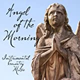 Instrumental Country Music - Angel of the Morning