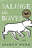 Book cover from Salvage the Bones: A Novel by Jesmyn Ward