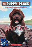 img - for Baxter - The Puppy Place book / textbook / text book