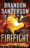 Firefight: Roman (Die Rächer, Band 2)